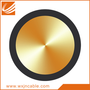 300/500V Single-core Non-sheathed Solid Conductor Cable
