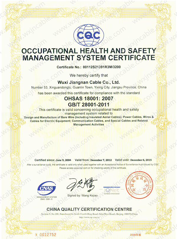 Certificate ISO18001 Of CQC