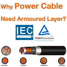 Armored Layer Power Cable